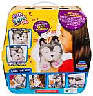 Интерактивная игрушка Щенок моей мечты Фрости Little Live Pets Frosty My Dream Puppy Moose, фото 3