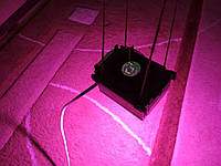 Фитолампа 50 Вт для роста растений, мультиспектр 400-840nm
