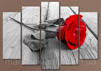 Модульная картина «Красная роза на сером», цветы