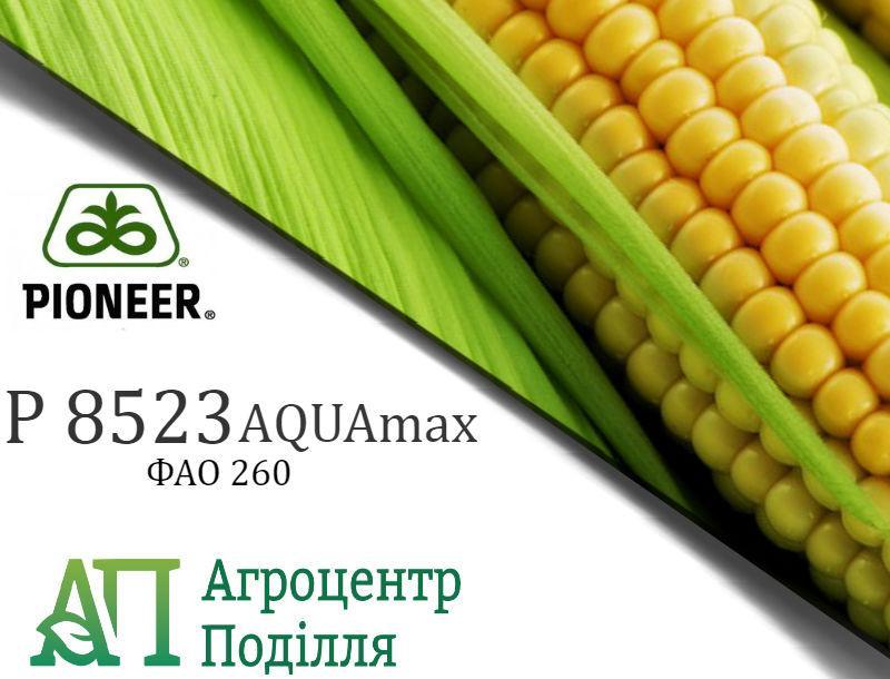 Семена кукурузы P 8523 / П 8523 АQUAmax (ФАО 260) Пионер