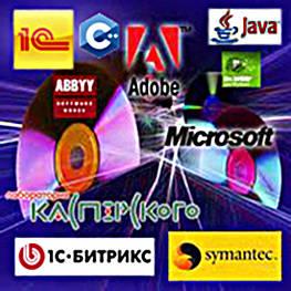 Программная инженерия и автоматизация бизнес-процессов