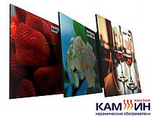 Керамический обогреватель КАМ-ИН 950СT с рисунком и терморегулятором Украина, фото 3