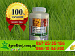 Титус гербицид 0.5кг на кукурузу на 10 гектар