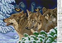 """Схема для вышивки бисером А3 """"Взгляд волка"""""""