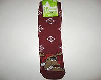 Махровые женские носки Олень бордо