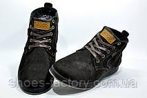 Ботинки зимние в стиле Ecco мужские на меху, Brown, фото 2