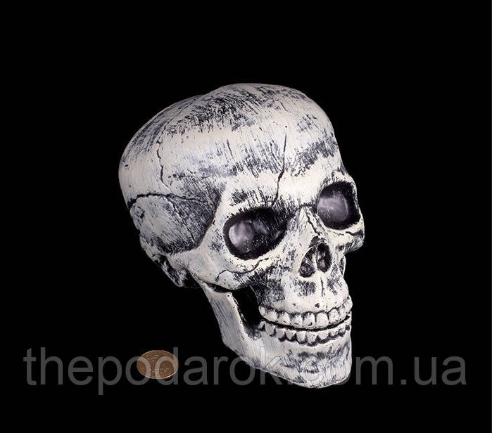 Декор Череп с подвижной челюстью