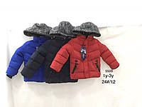 Куртки зимние на мальчика оптом, Nature, 12-36 рр
