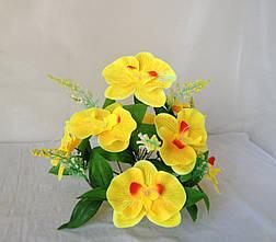 Орхидея  на подставке 7 голов 13 ног