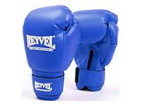 Боксёрские перчатки Reyvel Винил 6 унций Синие