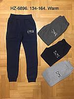 Спортивные утепленные штаны для мальчика оптом, Active Sports, 134-164 см,  № HZ-6896, фото 1