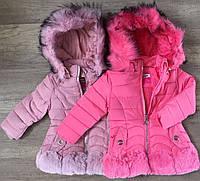 Куртки зимние на девочек оптом, Nature, 1-6 рр