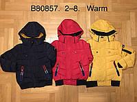 Куртка утепленная для мальчиков оптом, Grace, 2-8 лет,  № B80857, фото 1