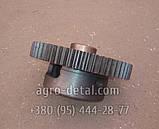 Ступица дифференциала Т25-2403020-Е1 (корпус),коробки трактора Т-40, фото 2