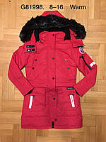 Куртка утепленная для девочек оптом, Grace, 8-16 лет,  № B81998, фото 1