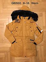 Куртка утепленная для девочек оптом, Grace, 8-16 лет,  № B82002, фото 1