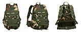 Рюкзак TAD тактический, походной, штурмовой, туристический, военный molle 38л, фото 4
