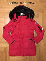 Куртка утепленная для девочек оптом, Grace, 8-16 лет,  № B82001, фото 1