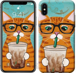 "Чохол на iPhone X Зеленоокий кіт в окулярах ""4054c-1050-15886"""