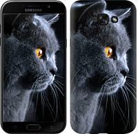 """Чехол на Samsung Galaxy A7 (2017) Красивый кот """"3038c-445-15886"""""""
