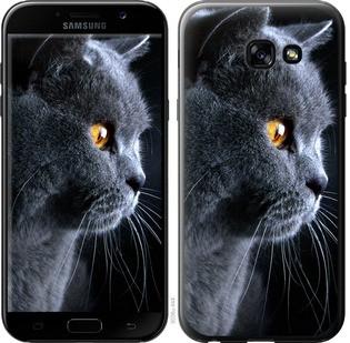 """Чехол на Samsung Galaxy A5 (2017) Красивый кот """"3038c-444-15886"""""""