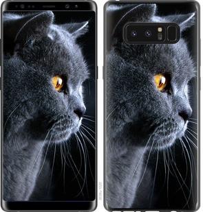 "Чехол на Samsung Galaxy Note 8 Красивый кот ""3038c-1020-15886"""