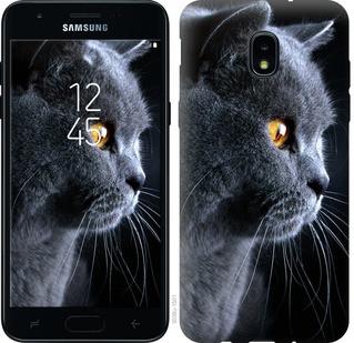 """Чехол на Samsung Galaxy J3 2018 Красивый кот """"3038u-1501-15886"""""""
