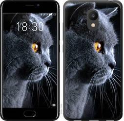 """Чехол на Meizu M6 Красивый кот """"3038u-1349-15886"""""""