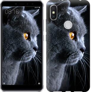 "Чехол на Xiaomi Redmi S2 Красивый кот ""3038u-1494-15886"""