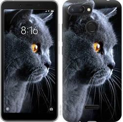"""Чехол на Xiaomi Redmi 6 Красивый кот """"3038u-1521-15886"""""""