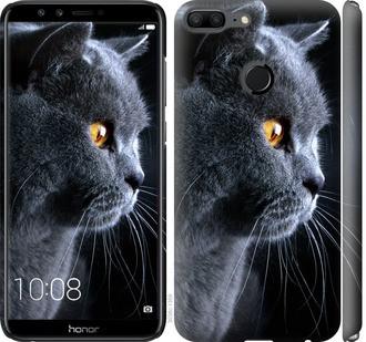 "Чохол на Huawei Honor 9 Lite Красивий кіт ""3038c-1359-15886"""