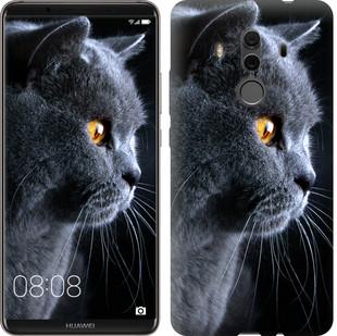 """Чохол на Huawei Mate 10 Pro Красивий кіт """"3038u-1138-15886"""""""