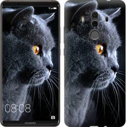 "Чехол на Huawei Mate 10 Pro Красивый кот ""3038u-1138-15886"""