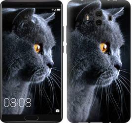 "Чехол на Huawei Mate 10 Красивый кот ""3038u-1116-15886"""
