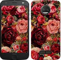 """Чехол на Motorola MOTO Z Цветущие розы """"2701c-419-15886"""""""
