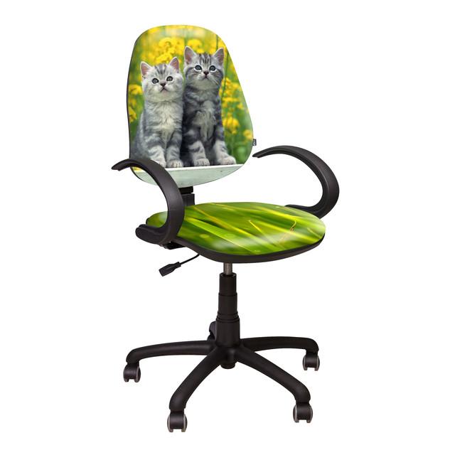 Кресло Поло 50/АМФ-5 Дизайн №8 Котята.