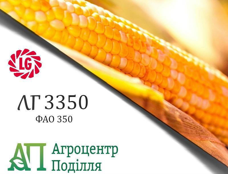 Семена кукурузы ЛГ 3350  (ФАО 350) ЛИМАГРЕЙН