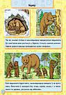 Енциклопедія в картинках. Тварини лісу. Книга Горянської І.В., фото 3