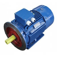 Электродвигатель електродвигун АИР 315 М6 132 кВт 1000 об/мин Украина