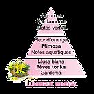 Аромат - наполнитель Maison Berger : Luminous Mimosa  500 мл 115353-BER, фото 2