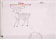 Сатин (хлопковая ткань) на светлом молоке нарисованные лесные звери, фото 2