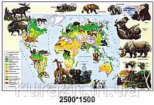 Стенд «Рослинний і тваринний світ на карті»