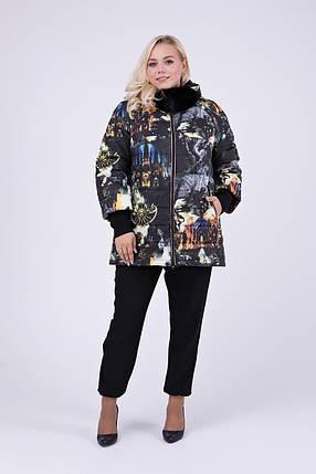 Зимний пуховик-куртка   с натуральным мехом на капюшоне  Большие размеры от 48 до 68, фото 2