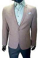 Мужской пиджак Lanasso №111/2, фото 1