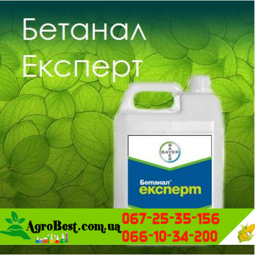Бетанал Експерт гербицид