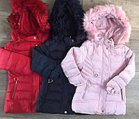 Куртки на меху для девочек оптом, Nature, 12/18-30/36 мес., арт. RSG-5521