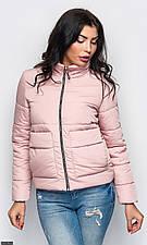 Куртка858403-4 пудра  Осень-Зима 2018  с 42 по 52 размер  (мш)