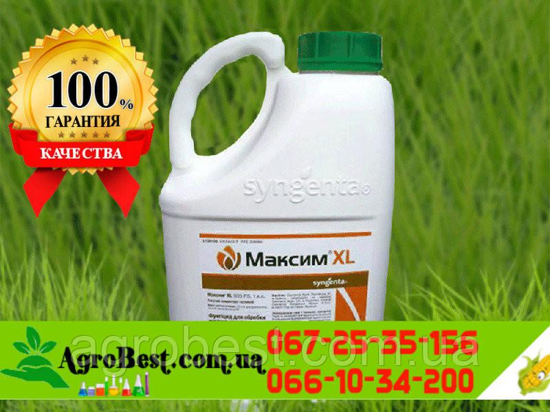 Протравитель Максим XL 035- 5л Syngenta