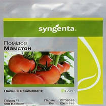 МАМСТОН F1 / MAMSTON F1, 500 семян — томат индетерминантный розовоплодный, Syngenta, фото 3
