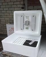 Инкубатор Несушка БИ-1 с автоматическим переворотом на 70 яиц